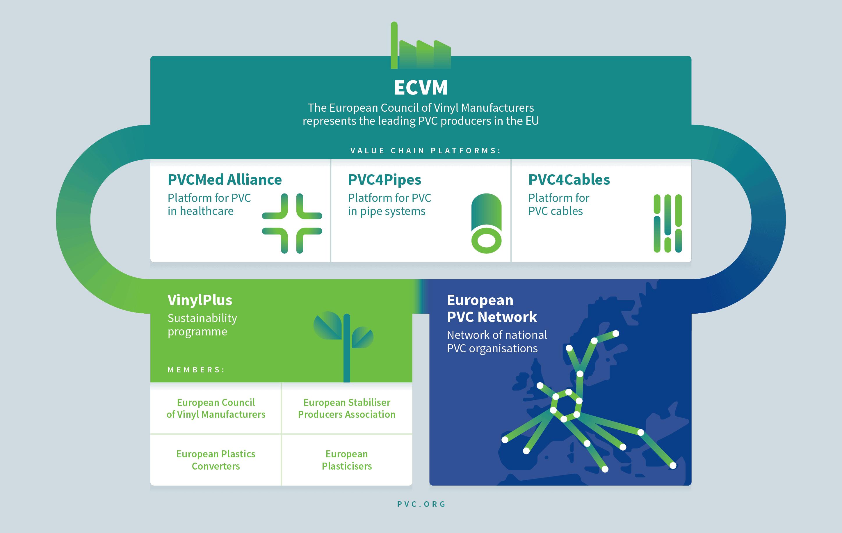 ECVM organisation chart